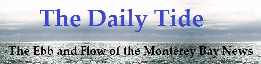 Welcome to The Daily Tide